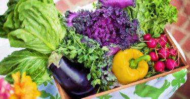 bio-organique-ferme-magasins-une