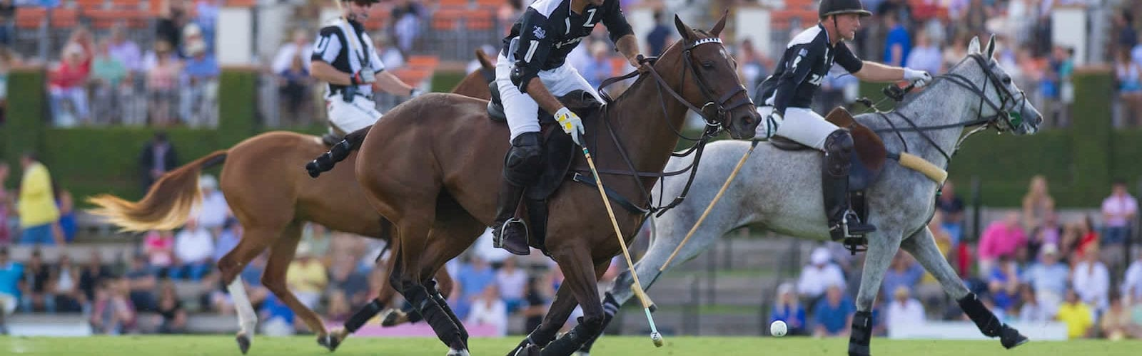 match-polo-saison-palm-beach-floride-une