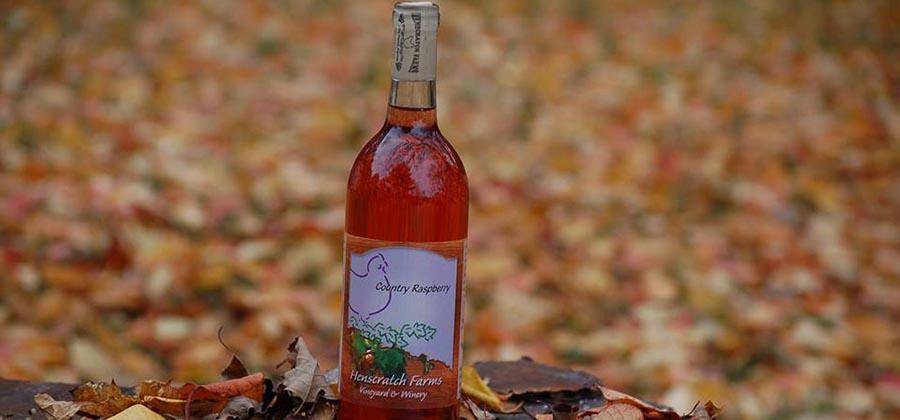 route-vins-vignobles-floride-henscratch-farms-vineyard-winery