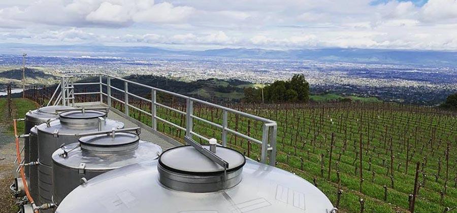 route-vins-vignobles-floride-mount-eden-vineyard