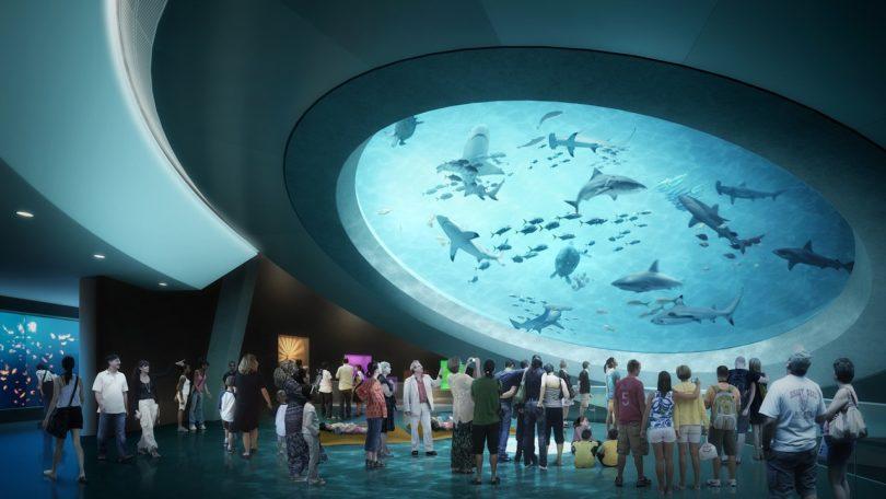 Miami-Science-Museum-floride