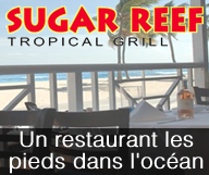 SUGAR REEF Tropical Grill
