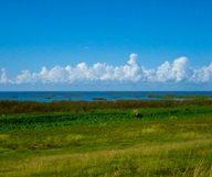 Les plus belles balades au bord du lac Okeechobee