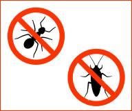 Anti cafards et insectes pour la maison