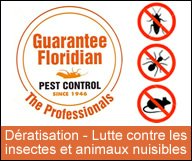 Comment débarrasser votre maison de tous les animaux nuisibles ?