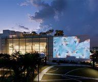 Une toile gratuite sous les étoiles à Miami Beach