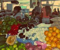 Redland's Farmers Market au sud de Miami