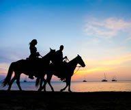 Une balade à cheval sur la plage à Amelia Island