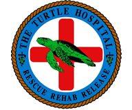 The Turtle Hospital, le paradis des ninjas