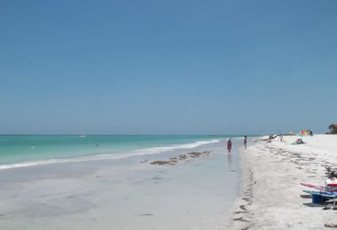 top-5-plages-tampa-une