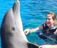 Avez-vous déjà nagé avec des dauphins ?