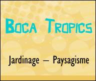 Boca Tropics