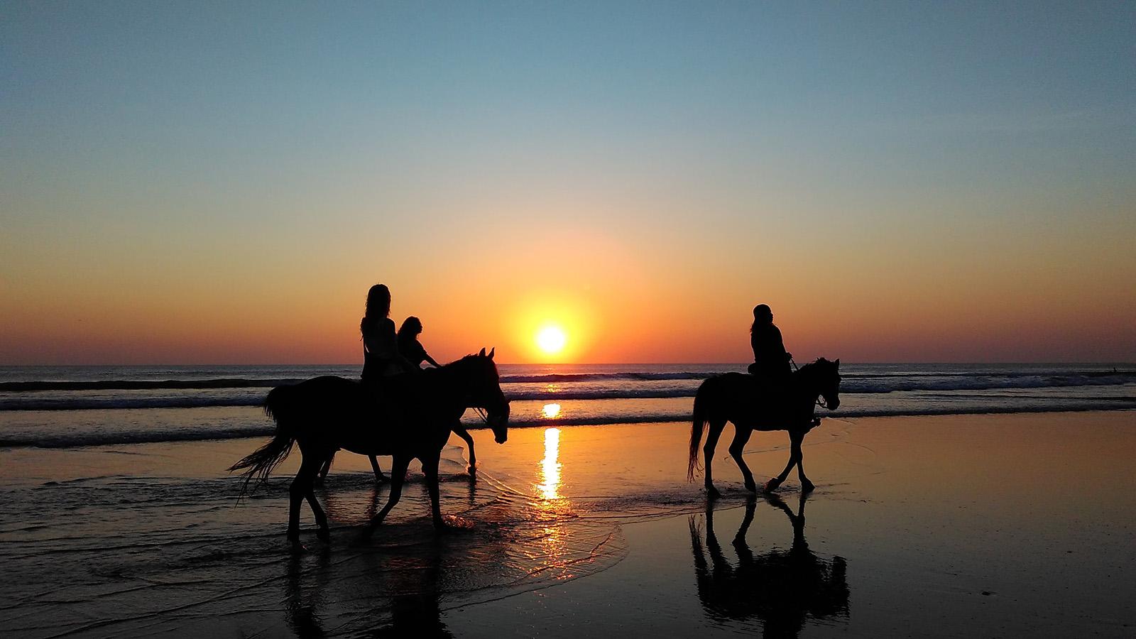 Faire du cheval sur la plage en Floride