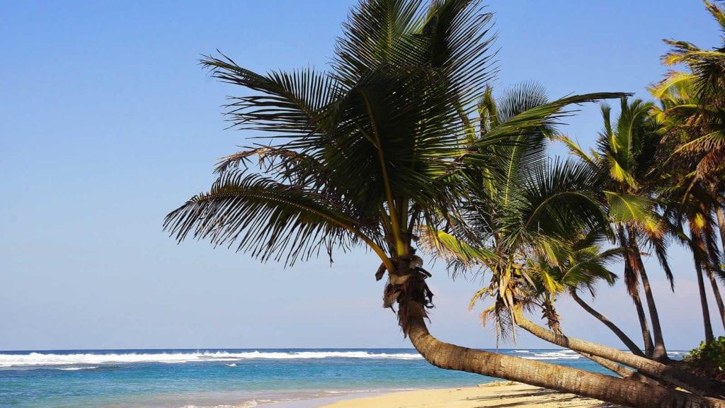 escapade-republique-dominicaine-plages-iles-caraibes-punta-cana