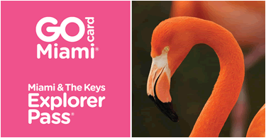 pass-attractions-miami-meilleurs-prix-go-city-card-une