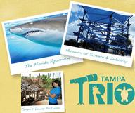 Ceetiz Orlando / St Augustine / Tampa
