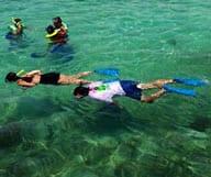 Les meilleurs spots de plongée à Key West