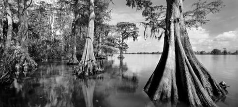 Une nuit au cœur des Everglades