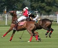 Un match de Polo en Floride