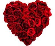 Categorie speciale Saint Valentin