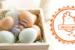 omeletteandco-franchise-restauration-rapide-omelettes-s03