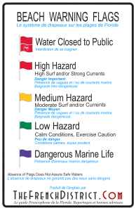 french-district-plages-floride-drapeaux-baignade-dangers
