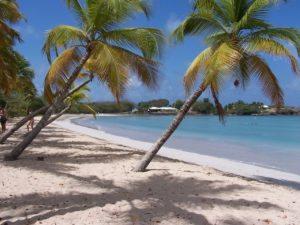 Martinique_Beach_(Salines)