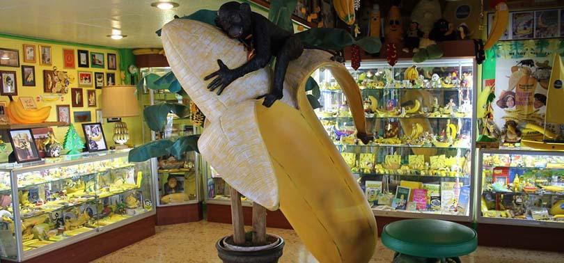 top-musees-fous-originaux-etats-unis-hair-museum-banana
