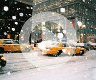Passer l'hiver à New York – le zapping