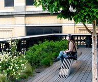 Balade sur la High Line, en images