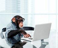 Le marketing en ligne évolue, et vous ?