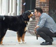 Les bons plans quand on a un chien à Manhattan
