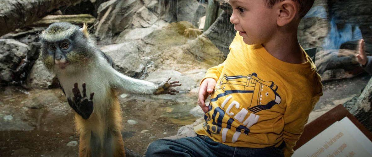 visiter-new-york-famille-enfants-meilleures-activites-incontournables-une