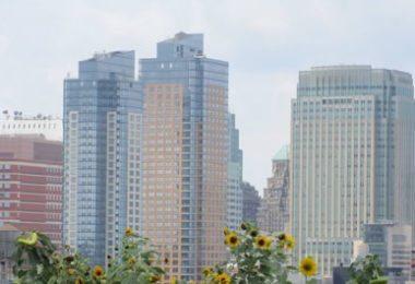 Hi-New-York