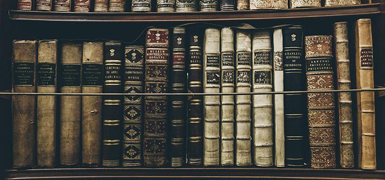 bibliotheques-secretes-new-york (1)