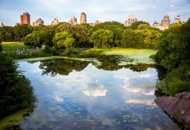 Les plus beaux parcs de New York City