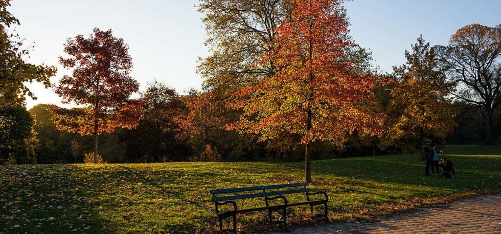 plus-beaux-meilleurs-parcs-new-york-city6