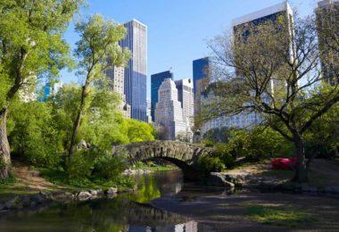 Les plus beaux parcs à Manhattan et autour