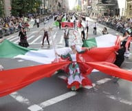 Viva Italia, Grazia Italia