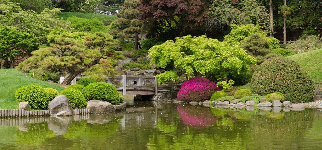 mariage-demande-organisation-romantique-new-york-etats-unis-brooklyn-garden-botanical