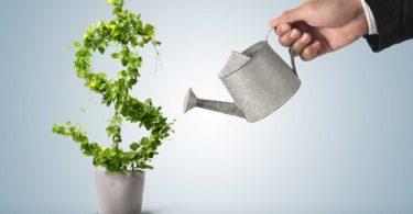 12-services-investir-aux-etats-unis