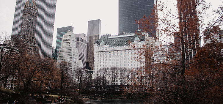 appartement-plus-cher-manhattan (4)