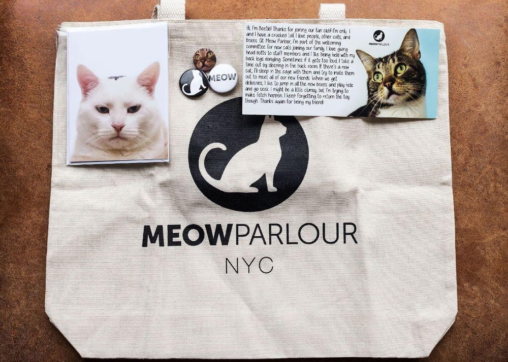 meow-parlour-cafe-a-chats-cat-bar-manhattan-03g