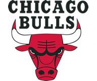 Dans l'arène des Bulls de Chicago