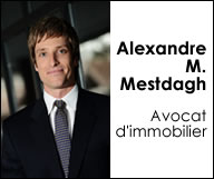 Alexandre M. Mestdagh