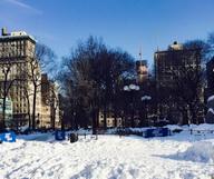 My New York