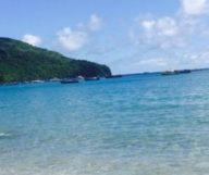Martinique, île sucrée