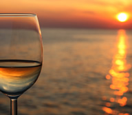 Voyage into the world of French Wines!