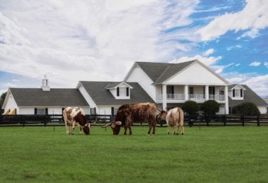 southfork-ranch-serie-dallas-une