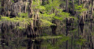 Les plus beaux lacs du Texas